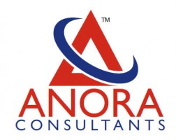 Maid agency: ANORA CONSULTANTS PTE. LTD.(13C6638)